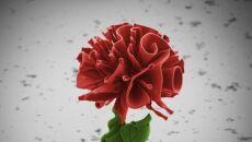 Mikroskopijne kwiaty wyhodowane przez naukowców